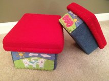Kid's Fun Storage Fabric covered Boxes in Plainfield, Illinois