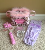 Princess Accessories in Naperville, Illinois